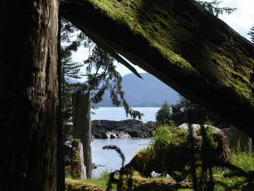 Fallen House Beam at Sgaang Gwaii